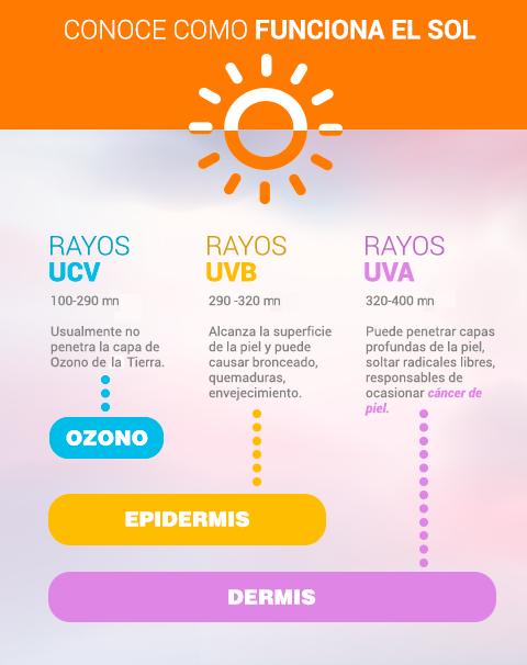 rayos ultravioleta vitamina D